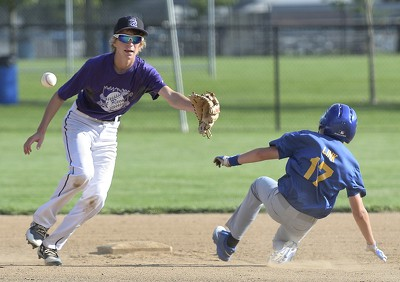 Marion Local Gold vs Fort Recovery Purple Pony League